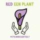 red-een-plant